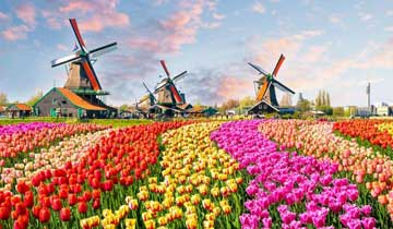 روش های مهاجرت به هلند
